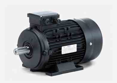 Hoyer 3120900100  IE2 Electric Motor